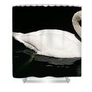 Once Upon Reflection Shower Curtain