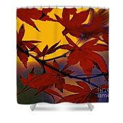 One Autumn Evening By Kaye Menner Shower Curtain