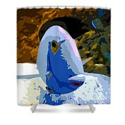 One Colorful Fish Shower Curtain