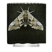 One Eyed Sphinx Moth Shower Curtain