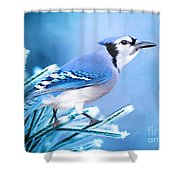 One Frosty Morning Shower Curtain