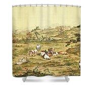 One Hundred Horses 5 Shower Curtain