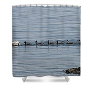 One In Every Family Shower Curtain