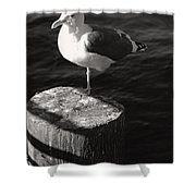 One Leg Up Shower Curtain