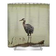 One Log Shower Curtain