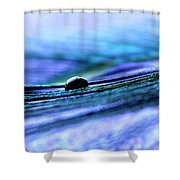 One Miracle Shower Curtain