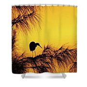 One Of A Series Taken At Mahoe Bay Shower Curtain by John Edwards