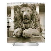One Of Four Lion Statues Outside St George's Hall Liverpool Shower Curtain