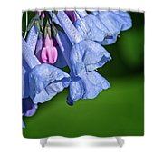 One Pink Bell Shower Curtain