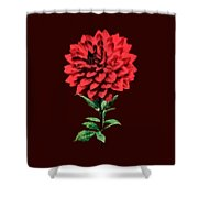 One Red Dahlia Shower Curtain