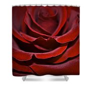 One Red Rose Shower Curtain