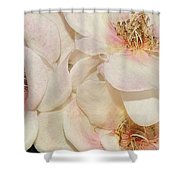 One Small Visitor Shower Curtain