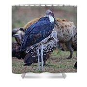 One Stork Shower Curtain