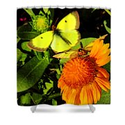 One Sulpher In Flight Shower Curtain