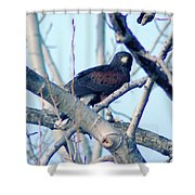 One That Got Away  Shower Curtain