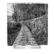 One To Follow Shower Curtain