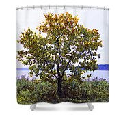 One Tree Hudson River View Shower Curtain