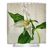 One Trillium Shower Curtain