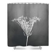 One Vision Shower Curtain