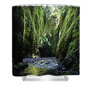 Oneonta Gorge Adventure Shower Curtain