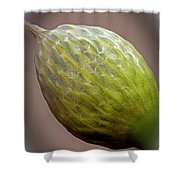 Onion Flower Macro Shower Curtain