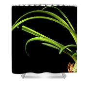 Onion Greens Shower Curtain