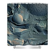Onion Root Tip Cell, Freeze Fracture Tem Shower Curtain