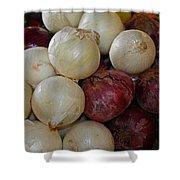 Onions IIi Shower Curtain