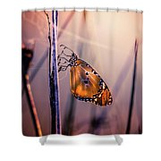 Only Beauty Remains Shower Curtain