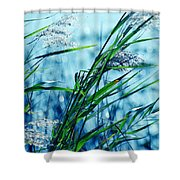 Only The Wind Knows Shower Curtain