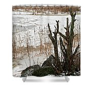 Onshore 2 Shower Curtain