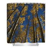 Onward Toward The Sky Shower Curtain