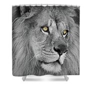 Onyo #19 Black And White  T O C Shower Curtain