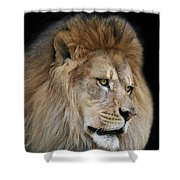 Onyo #4 V2 Shower Curtain