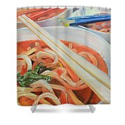 Oodles And Noodles, 2017 Shower Curtain
