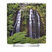 Opaekaa Falls - Kauai Shower Curtain