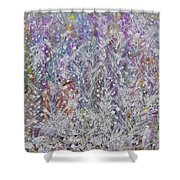 Opalescent Shower Curtain by Don  Wright