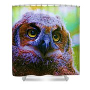 Opalescent Owl Shower Curtain