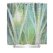 Opalescent Twilight I Shower Curtain
