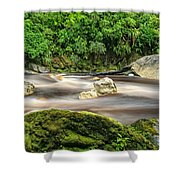 Oparara River Shower Curtain