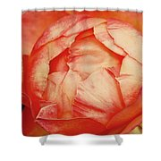 Open By Design Shower Curtain