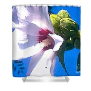 Open Hibiscus Flower With Deep Blue Sky Shower Curtain
