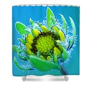 Open Mind And Open Heart Shower Curtain