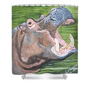 Open Mouthed Hippo On Wood Shower Curtain