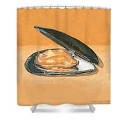 Open Mussel Shower Curtain
