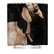 Operatic Goat Shower Curtain