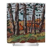 Opinicon November Forest Shower Curtain