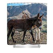 Opposing Sides Shower Curtain