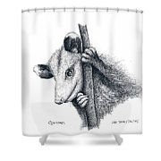 Virginia Opposum Shower Curtain