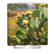 Opuntia In Bloom Shower Curtain